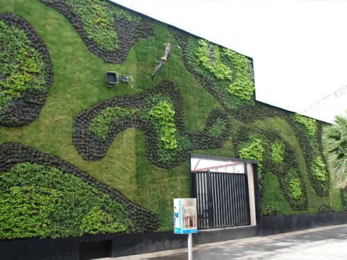 Green-Walls-01